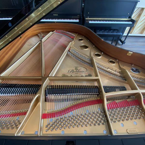 Baldwin BP 165 Strings