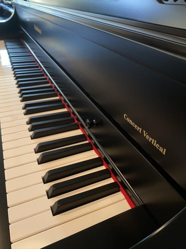 Bladwin B 52 keys 3