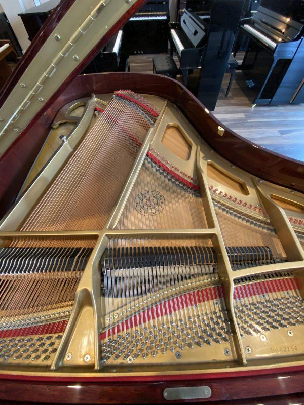 Everett SnDG02756 strings
