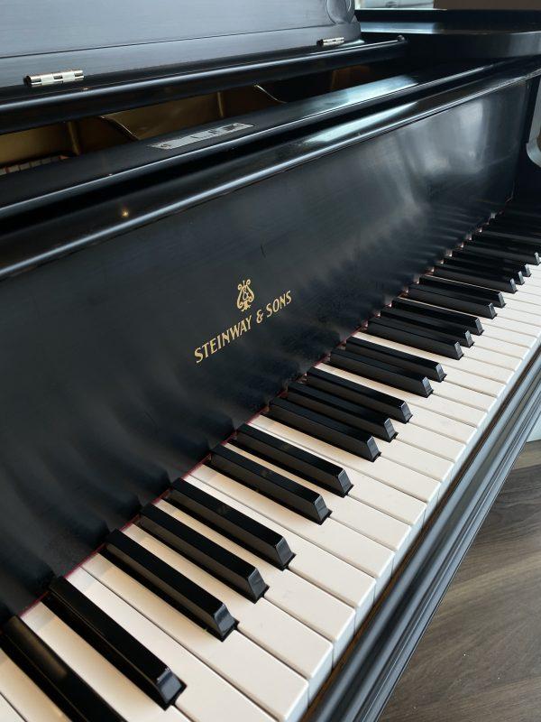 Steinway Model B Sn126044 keys