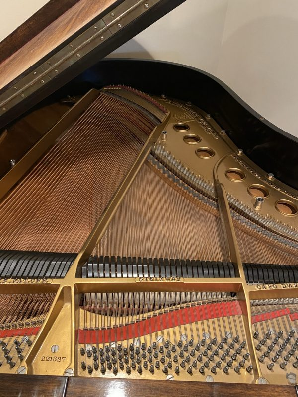 Steinway SN221327 strings